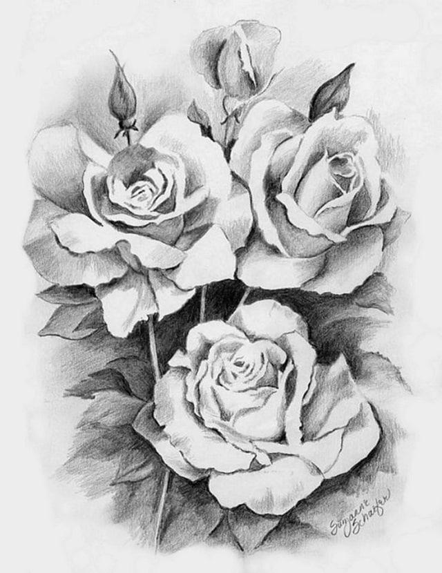 Dibujos a lápiz para tatuajes, rosas